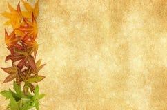 Φύλλα φθινοπώρου σε ένα παλαιό κατασκευασμένο υπόβαθρο στοκ φωτογραφία