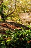 Φύλλα φθινοπώρου στην κορυφή στεγών Στοκ Εικόνα