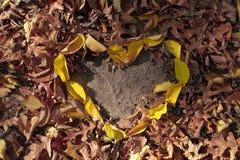 Φύλλα φθινοπώρου στη μορφή καρδιών στο φυσικό κίτρινο κόκκινο πορτοκαλί χρώμα στο έδαφος Στοκ Φωτογραφία