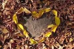 Φύλλα φθινοπώρου στη μορφή καρδιών στο φυσικό κίτρινο κόκκινο πορτοκαλί χρώμα στο έδαφος Στοκ φωτογραφίες με δικαίωμα ελεύθερης χρήσης