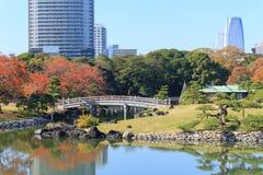 Φύλλα φθινοπώρου στους κήπους Hamarikyu, Τόκιο στοκ εικόνα με δικαίωμα ελεύθερης χρήσης