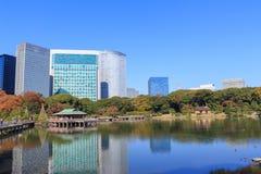 Φύλλα φθινοπώρου στους κήπους Hamarikyu, Τόκιο στοκ φωτογραφία με δικαίωμα ελεύθερης χρήσης