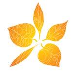 Φύλλα φθινοπώρου Τυποποιημένα πορτοκαλιά φύλλα που βρίσκονται σε έναν κύκλο Ένα στρογγυλό λογότυπο με τα φύλλα Εγκαταστάσεις με τ Στοκ Εικόνες