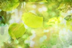 Φύλλα φθινοπώρου Watercolor Στοκ εικόνα με δικαίωμα ελεύθερης χρήσης