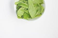 Φύλλα Arugula σε ένα κύπελλο Στοκ Εικόνες