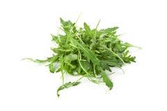 Φύλλα Arugula Στοκ Εικόνες
