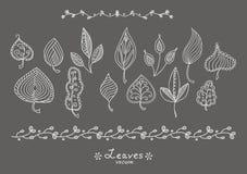 Φύλλα Doodle Στοκ εικόνες με δικαίωμα ελεύθερης χρήσης