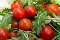 Φύλλα Ruccola και ντομάτες κερασιών Στοκ Εικόνα