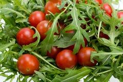 Φύλλα Ruccola και ντομάτες κερασιών Στοκ φωτογραφία με δικαίωμα ελεύθερης χρήσης