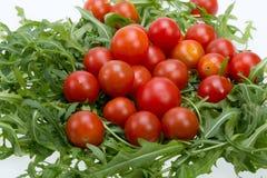 Φύλλα Ruccola και ντομάτες κερασιών Στοκ Εικόνες