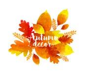 Φύλλα watercolor φθινοπώρου Στοκ εικόνες με δικαίωμα ελεύθερης χρήσης
