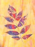 Φύλλο δέντρων στο λεκιασμένο γυαλί στοκ εικόνες με δικαίωμα ελεύθερης χρήσης