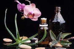 Φύλλο και ορχιδέα χορταριών με ένα aromatherapy ουσιαστικό πετρέλαιο Στοκ φωτογραφία με δικαίωμα ελεύθερης χρήσης