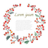 Φύλλο, μούρα και λουλούδια Watercolor γύρω από το πλαίσιο Στοκ Φωτογραφίες