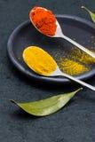 Φύλλο πάπρικας, turmeric και κόλπων Στοκ φωτογραφία με δικαίωμα ελεύθερης χρήσης