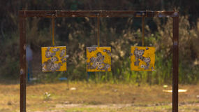 Φύλλο πρακτικής στόχων πυροβολισμού Στοκ φωτογραφία με δικαίωμα ελεύθερης χρήσης