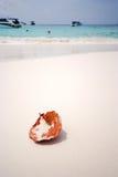 Φύλλο στην παραλία νησιών TA Chai, Ταϊλάνδη Στοκ εικόνα με δικαίωμα ελεύθερης χρήσης