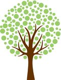 Φύλλο σφενδάμου δέντρων Στοκ εικόνες με δικαίωμα ελεύθερης χρήσης