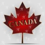 Φύλλο σφενδάμου του Καναδά Στοκ εικόνες με δικαίωμα ελεύθερης χρήσης