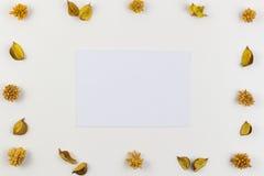 Φύλλο της Λευκής Βίβλου που περιβάλλεται από τα κίτρινα ξηρά λουλούδια, πλαίσιο συνόρων εγκαταστάσεων στο άσπρο υπόβαθρο Η τοπ άπ Στοκ Φωτογραφία