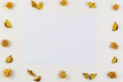Φύλλο της Λευκής Βίβλου που περιβάλλεται από τα κίτρινα ξηρά λουλούδια, πλαίσιο συνόρων εγκαταστάσεων στο άσπρο υπόβαθρο Η τοπ άπ Στοκ εικόνες με δικαίωμα ελεύθερης χρήσης