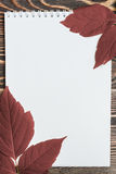 Φύλλο φθινοπώρου με το κενό φύλλο στον ξύλινο πίνακα Στοκ φωτογραφία με δικαίωμα ελεύθερης χρήσης