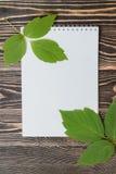 Φύλλο φθινοπώρου με το κενό φύλλο στον ξύλινο πίνακα Στοκ Εικόνες