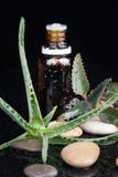 Φύλλο χορταριών με ένα aromatherapy ουσιαστικό πετρέλαιο Στοκ Φωτογραφία