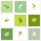 Φύλλο. Διανυσματικά πρότυπα λογότυπων καθορισμένα Στοκ Εικόνα