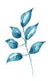 Φύλλο Watercolor στο άσπρο στοιχείο σχεδίου υποβάθρου Στοκ εικόνες με δικαίωμα ελεύθερης χρήσης