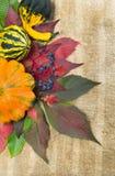Φύλλωμα φθινοπώρου και ώριμη κολοκύθα Στοκ φωτογραφίες με δικαίωμα ελεύθερης χρήσης