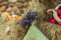 Φύλλωμα φθινοπώρου με τα decotative πορτοκαλιά λουλούδια στη θυμωνιά χόρτου Στοκ φωτογραφίες με δικαίωμα ελεύθερης χρήσης