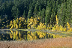 Φύλλωμα φθινοπώρου που απεικονίζεται στη λίμνη Στοκ Εικόνες