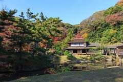Φύλλωμα φθινοπώρου στον κήπο Sankeien, Yokohama, Kanagawa, Ιαπωνία στοκ φωτογραφία με δικαίωμα ελεύθερης χρήσης