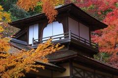 Φύλλωμα φθινοπώρου στον κήπο Sankeien, Yokohama, Kanagawa, Ιαπωνία στοκ φωτογραφίες με δικαίωμα ελεύθερης χρήσης
