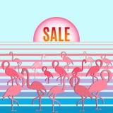 Φλαμίγκο με την πώληση επιγραφής Στοκ εικόνα με δικαίωμα ελεύθερης χρήσης