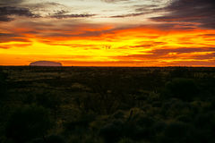 Φλογερή ανατολή σε Uluru Στοκ Εικόνες