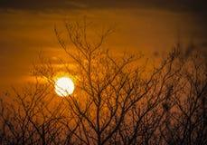 Φλογερό ηλιοβασίλεμα στη Νότια Αφρική Στοκ φωτογραφία με δικαίωμα ελεύθερης χρήσης
