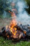 Φλοιοί καρύδων με την πυρκαγιά στοκ φωτογραφίες με δικαίωμα ελεύθερης χρήσης