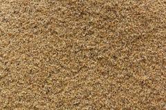 Φλοιοί ρυζιού Στοκ Εικόνα