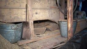 Φλοιός και άχυρο που πέφτουν από το σιτάρι που κοσκινίζει τη μηχανή άτομα αγροτών που εργάζονται στο αγρόκτημα απόθεμα βίντεο