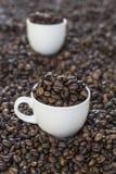 Φλυτζάνια στα φασόλια ενός coffe Στοκ εικόνα με δικαίωμα ελεύθερης χρήσης