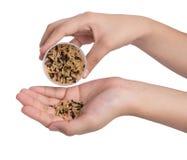 Φλυτζάνι εκμετάλλευσης χεριών του σιταριού καφετιού ρυζιού Στοκ εικόνα με δικαίωμα ελεύθερης χρήσης