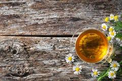 Φλυτζάνι ιατρικού chamomile Στοκ Εικόνες