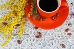Φλυτζάνι και mimosa Στοκ Φωτογραφίες