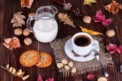 Φλυτζάνι καφέ, κρέμα, σιτάρια καφέ και oatmeal μπισκότα Στοκ φωτογραφία με δικαίωμα ελεύθερης χρήσης