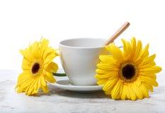 Φλυτζάνι καφέ με τα κίτρινα gerberas Στοκ φωτογραφία με δικαίωμα ελεύθερης χρήσης