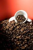 1 φλυτζάνι καφέ Στοκ εικόνα με δικαίωμα ελεύθερης χρήσης