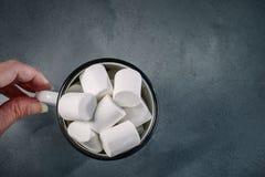 Φλυτζάνι με γλυκό marshmallow στα χέρια των γυναικών Στοκ εικόνες με δικαίωμα ελεύθερης χρήσης