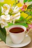 Φλυτζάνι με το κόκκινο τσάι Στοκ φωτογραφίες με δικαίωμα ελεύθερης χρήσης